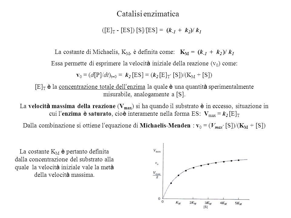 Catalisi enzimatica ([E]T - [ES]) [S]/[ES] = (k-1 + k2)/ k1